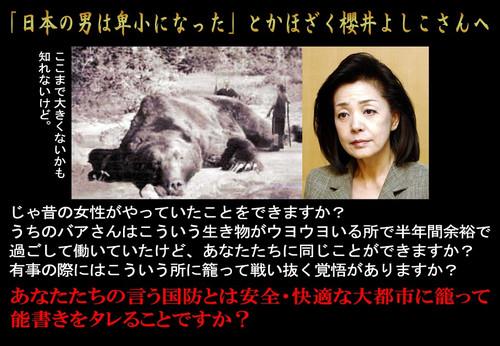 Yoshikotohiguma